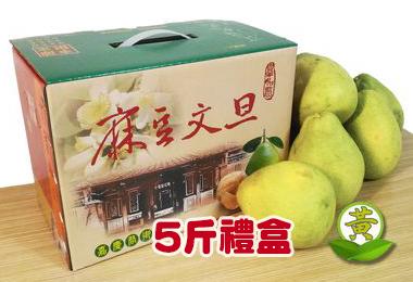極品麻豆文旦 5 斤禮盒裝(小顆)